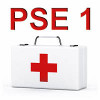 formation PSE1